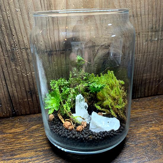 蛍光鉱物と苔のテラリウムワークショップ/きらら舎
