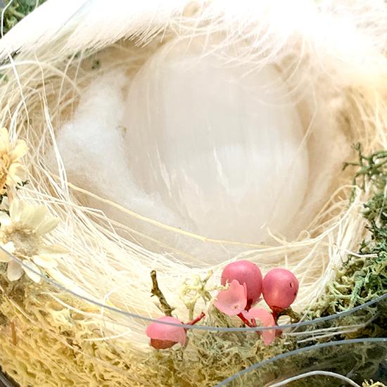 鉱物卵鳥の巣仕立て/きらら舎
