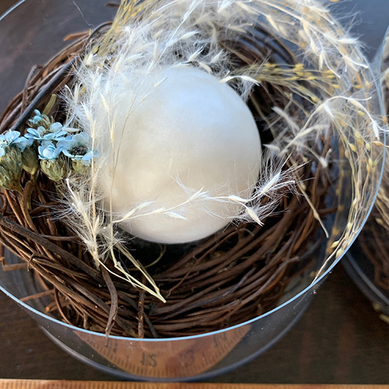 光る玉鳥の巣仕立て/きらら舎